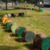 Boomslinger in groenstrook | Triënnale tuin- en landschapsarchitectuur